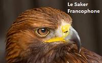 Le Saker Francophone fait peau neuve
