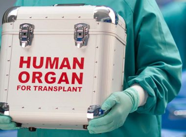 Organ-trafficking-380x280